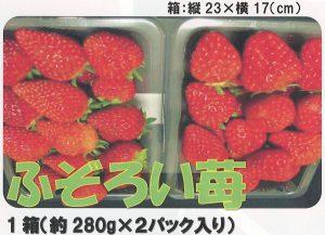 ふぞろい苺
